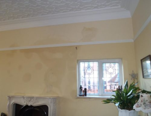 Problems with cavity wall insulation in an exposed wall